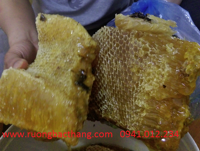 mật ong rừng nguyên sáp