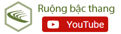 Kênh youtube ruộng bậc thang