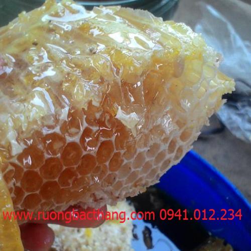 Phân biệt mật ong thật giả